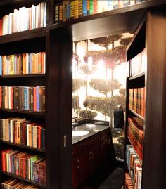 For those book lovers who have always wanted a secret doorway!