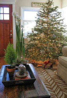 Sixty-Fifth Avenue: Christmas at our house 2013
