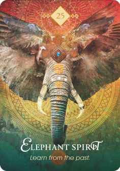The best and most intuitive decks created by a master on Oracle Cards, Colette studied many ancient divination systems to create these super accurate decks. Elephant Spirit Animal, Spirit Animal Totem, Animal Spirit Guides, Animal Totems, Gaia, Animal Medicine, Animal Symbolism, Lotus, Power Animal