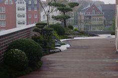 Japangarten-links-8317.jpg (1000×664)