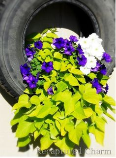Tire Planter: I want to make one of these
