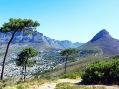 Table Mountain and Lions Head from the amazing view point on Signal Hill #CapeTown