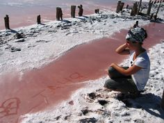 Геническое соленое озеро, полуостров Арабатская стрелка