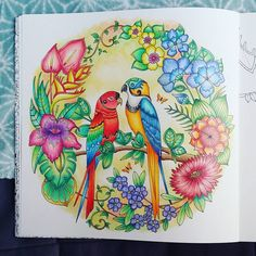 New one in Magical Jungle. I love this book !  #coloriage #arttherapie #coloringforadults #arttherapy #coloriageantistress #fabercastell #polychromos #softpastels #magicaljungle #penguinoriginal #johannabasford #mycreativeescape