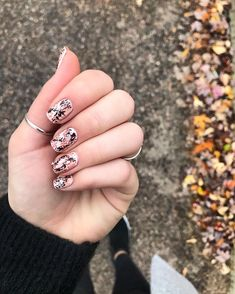 """Olivia Anderson on Instagram: """"i have been seeing snakeskin everything this fall so I wanted to try the pattern on my nails and this is my best attempt (this took a few…"""" Snake Skin, My Nails, I Am Awesome, Things I Want, Take That, Silver Rings, Fall, Pattern, Instagram"""