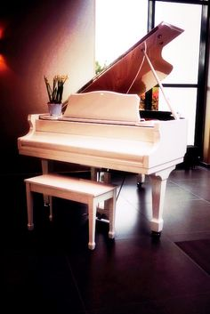Oh how badly I want a white grand piano http://pinterest.com/cameronpiano
