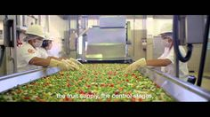 Nutrilite: A commitment to quality