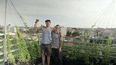 We all share many of the same essential needs such as the desire for growth, the craving for community and the lust for beer. Thousands Win, an urban farm in Brooklyn, has managed to meet these needs by developing a lightweight vine-growing system that produces hops on the rooftops of New York City.
