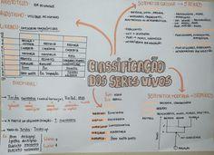 #classificação #taxonomia #biologia #resumo