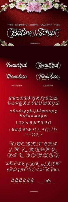 Baline Script Typeface + Bonus  Font @creativework247