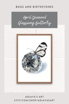 This April birthstone wall art is the perfect butterfly birthday gift for anyone born in April! Drawn in exquisite detail in coloured pencil, this diamond gemstone art print is available in my Etsy shop for digital download! To order your very own birthstone art print, visit etsy.com/shop/adlayasart April Butterfly | Diamond Art Drawing | April Birthday Gifts Butterfly Wall Decor, Butterfly Gifts, Butterfly Birthday, Diamond Art, Diamond Gemstone, Printing Services, Online Printing, Mom Birthday Gift, Birthstones