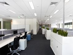 Open Plan Office Sekisui House  Really cool idea to put planter on top of filing cabinet
