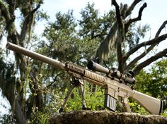Knights M-110 SASS (Semi-Automatic Sniper Rifle System) One of the best Rifles I've fired!!!
