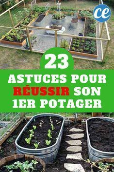 23 Vegetable growing tips for a successful first vegetable garden Potager Bio, Potager Garden, Garden Path, Gardening Magazines, Gardening Tips, Urban Gardening, Exterior, Plantation, Lawn Care