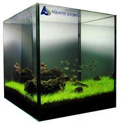 See more in the All Things Aquaria board: https://www.pinterest.com/JibinAbraham/all-things-aquaria/  Nano iwagumi