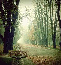Autumn in Cluj-Napoca, Romania