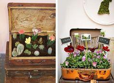 Espositori per piante creati con il riciclo valigie vintage #DIY #suitcase #vintage #plant