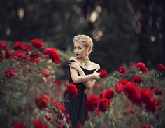 roses by Maryna Khomenko on 500px