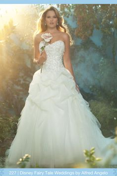 Disney Fairy Tale Weddings by Alfredo Angelo
