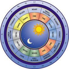 What Is Acupuncture - Traditional Chinese Medicine (TCM) Body Clock: Is there a Right or Wrong Time for Everyday Activities? Holistic Medicine, Holistic Healing, Natural Medicine, Natural Healing, Ayurveda, Chinese Body Clock, Eastern Medicine, You Wake Up, Qi Gong