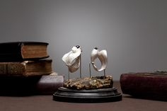 Lure - Nastassia Aleinikava Woodland, Jewelry Design, Table Lamp, Place Card Holders, Jewels, Designers, Home Decor, Table Lamps, Decoration Home
