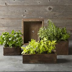 Barn Board Planter, Brown, Tall
