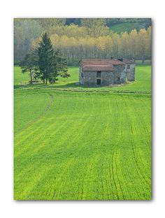 Primavera in Piemonte