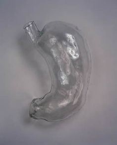 Glass Stomach - Kiki Smith, 1986