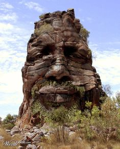 """Fake - Natural face in nature - This is titled """"Rock Face"""" by BonnySaintAndrew and was the 2nd place entry in Canvas Earth 11 on Worth1000.com  Sources:  http://rookery3.viary.com/storagev12/1338000/1338473_987d.jpg"""