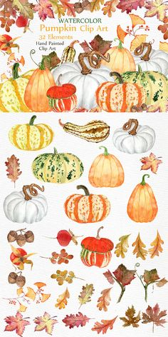 his is a great set of high quality hand painted watercolor pumpkins, leaves and elements. Perfect illustrations for all designs, wedding invitations, websites, blogs. cards, DIY designs.