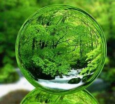 Crystal Ball of Nature World Of Color, Color Of Life, Go Green, Green Colors, Lush Green, Green Life, Water Droplets, Macro Photography, Bubble Photography