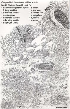 African animals #habitat #biome #desert. Find animals from the North African Desert, hidden in this printable picture.