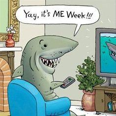 shark week! @Kristin Stanford @Emily Schoenfeld Schoenfeld Eakin