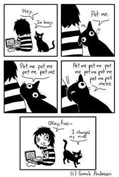 My cat. All the time.