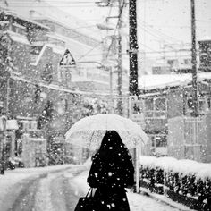 Everything falls with a sound,  But not snow.  Snow is silent when it hits the ground.