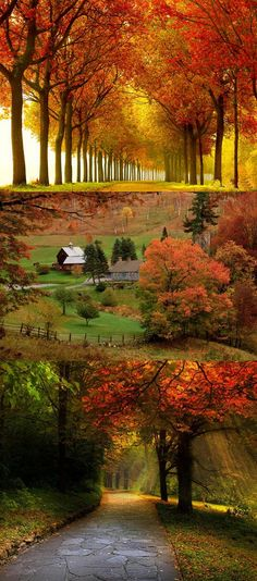 Autumn*     ........................................................ Please save this pin... ........................................................... Because for real estate investing... Click on this link now!  http://www.OwnItLand.com