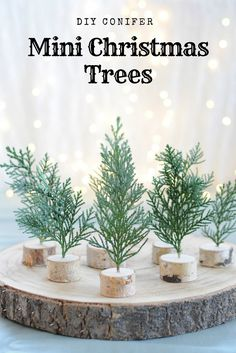 Please visit our website for Bohemian Christmas, Mini Christmas Tree, Christmas Ornament Crafts, Green Christmas, Rustic Christmas, Simple Christmas, Christmas Table Settings, Christmas Table Decorations, Christmas Themes