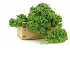 Kale Contains ALL The Essential Amino Acids and 9 Non-Essential Ones -  Kale, a less domesticated, dishevelled form of cabbage, is one of the most potent healing foods in existence today.
