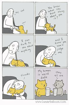 The truth about cats by Lunarbaboon (10+ Comics)