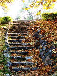 Stairway to... by Tayfun Sen, ODTU-ANKARA   TURKEY