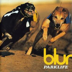 PARKLIFE by Blur. Packed with tales of England where girls-who-love-girls-who-love-boys-who-do-girls-like-they're-boys .definition of Britpop?= this album. Iconic Album Covers, Greatest Album Covers, Classic Album Covers, Music Album Covers, Music Albums, Music Film, Music Music, Book Covers, Damon Albarn