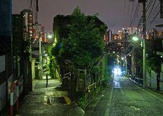 夜散歩のススメ「日無坂と富士見坂のY字路」 東京都豊島区