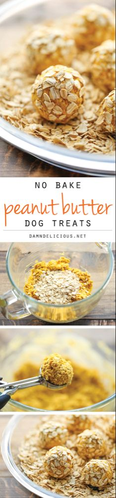 No Bake Peanut Butter Dog Treats - Easy peasy 4 ingredient treats that are sure to be your pup's favorite. And you can whip these up in just 15 min! Puppy Treats, Diy Dog Treats, Homemade Dog Treats, Dog Treat Recipes, Dog Food Recipes, Healthy Dog Treats, No Bake Dog Treats, Food Tips, Food Dog