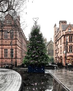 Feeling the winter chill in London today ❄️ even if isn't quite as snowy as this pic from Sunday! Adore the love poem dedication in the Christmas tree 💗 The Places Youll Go, Places To See, London Free, London Today, England And Scotland, London Travel, London City, London England, Great Britain