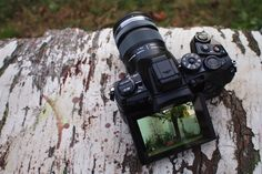 Olympus OM-D E-M1: Mirrorless Perfection for Serious Photographers
