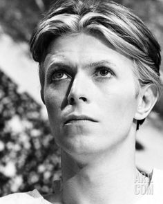 David Bowie - The Man Who Fell to Earth Reproduction photo