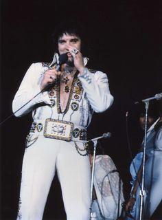 1977 2 12 20h30 Hollywood, Florida - Spartatorium