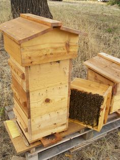 How to harvest a Warre hive