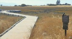 The Santa Rosa Plateau Ecological Preserve Step back in time at Santa Rosa Plateau This Old California can't disappear in Murrieta