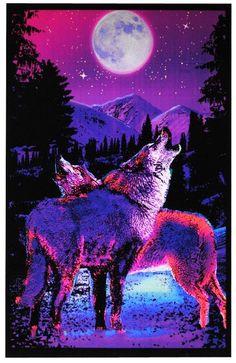 Howling Timberwolves (Black Light Poster)